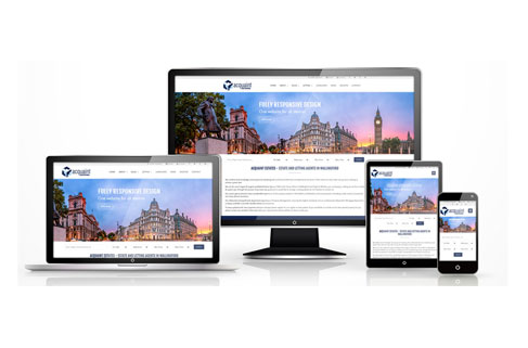 Naiwu osahon website software